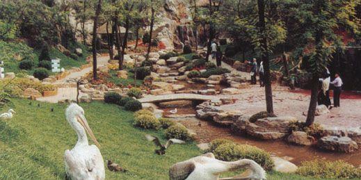 大城山公园旅游-大城山公园游记-大城山公园攻略